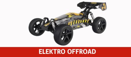 REELY RC Cars Elektro Offroad