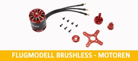 Flugmodell Brushless - Motoren